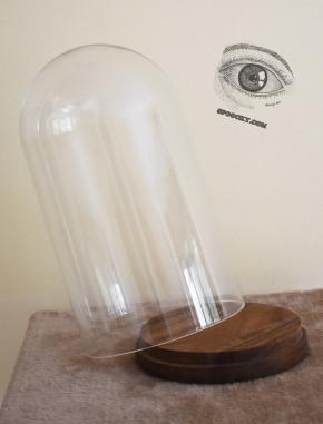 Cloche en verre pour la présentation des bombes de peinture. Customisable selon la commande Prix 20 euros Customisée 25 euros